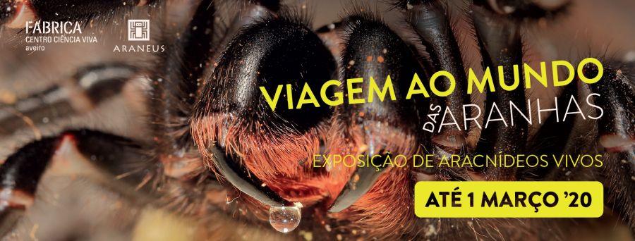 Exposição 'Viagem ao mundo das aranhas'