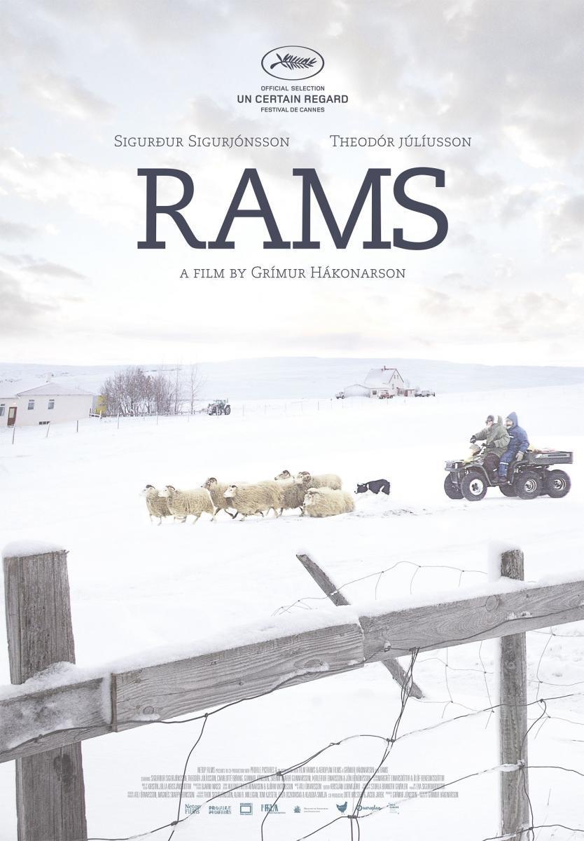 RAMS (EL VALLE DE LOS CARNEROS) // Proyección