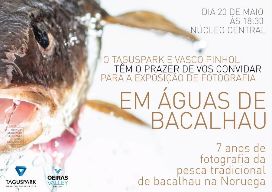 Exposição 'EM ÁGUAS DE BACALHAU
