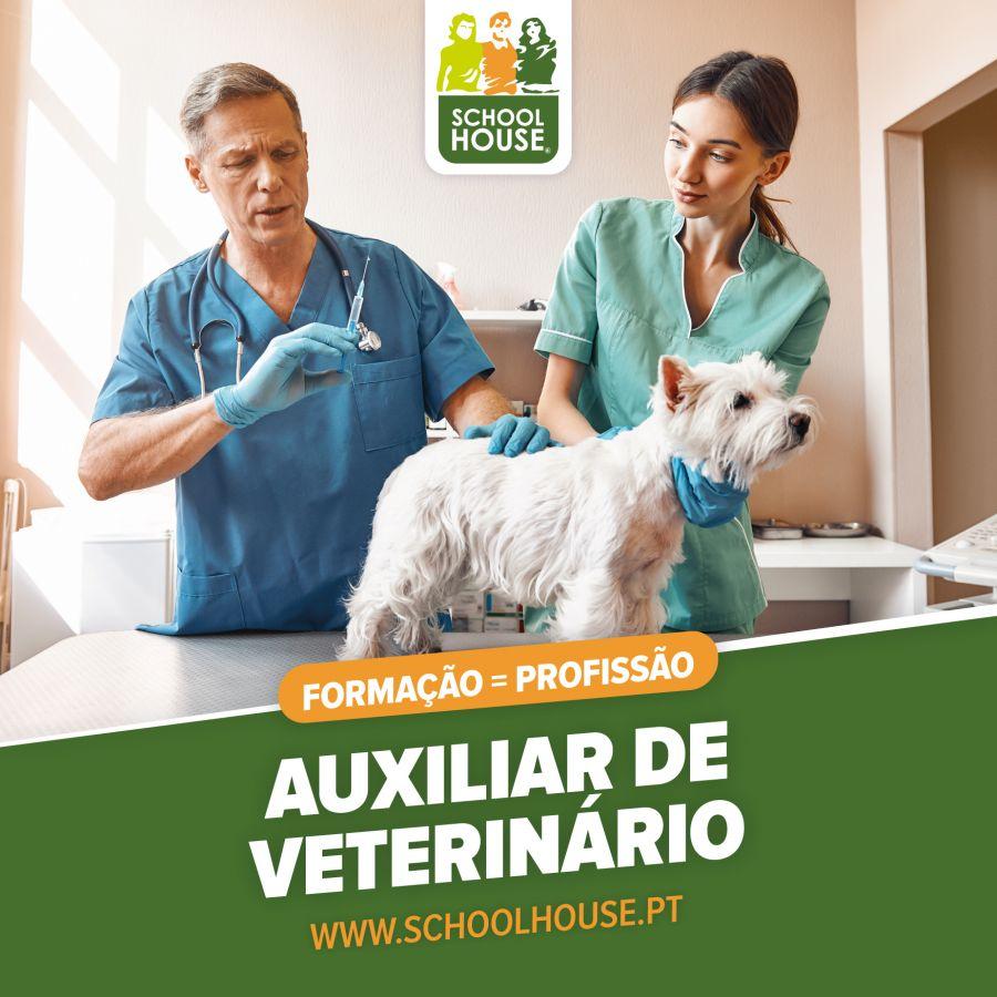 Curso Auxiliar de Veterinário