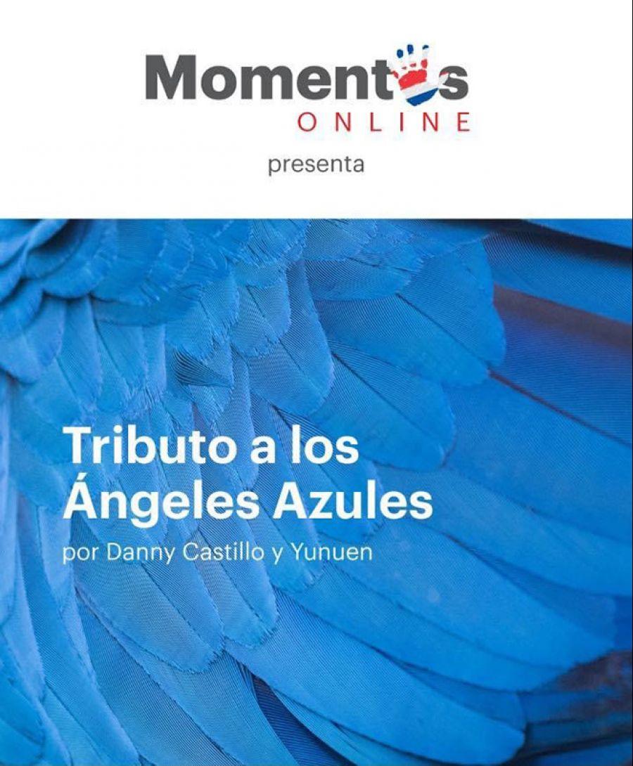 Grupo de Mujeres y la Opera, Tributo a Michael Jackson, Ojo de Buey y Tributo a los Ángeles Azules.