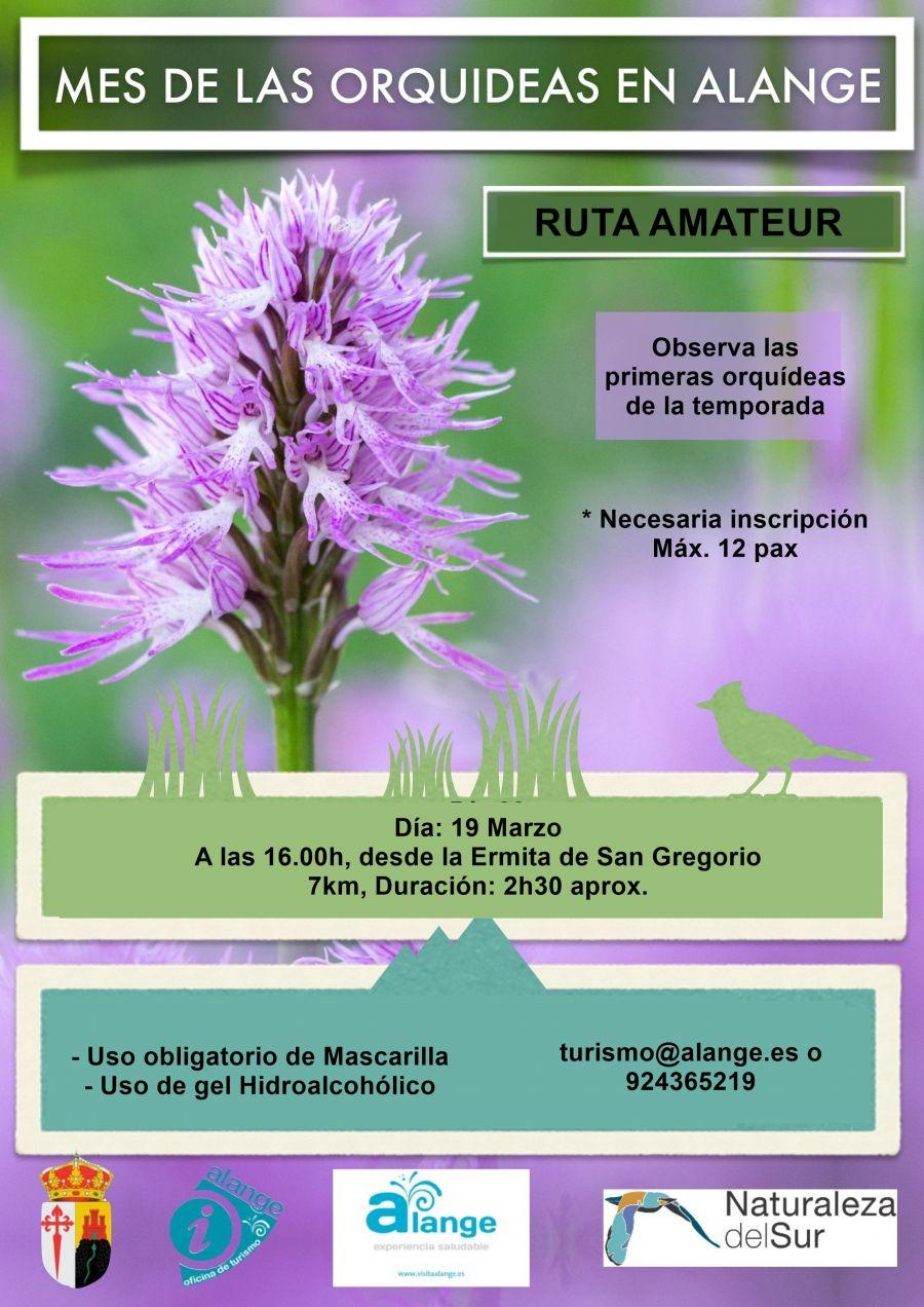 Ruta amateur 'Primeras Orquídeas'