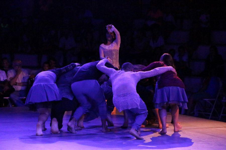 18º Festival Nacional de Danza Contemporánea. Colateral, Tsea, Irse, Torus