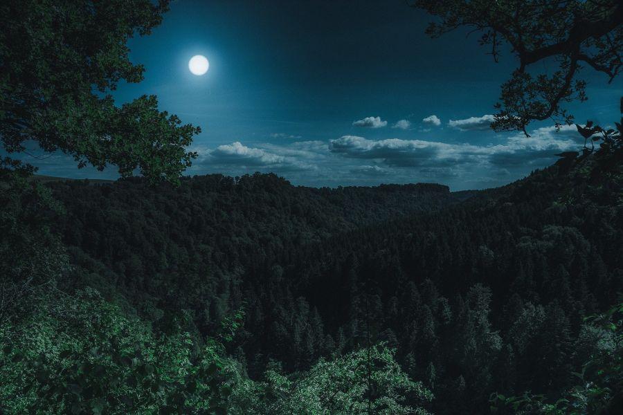 Caminhada e Meditação Lunar em Monserrate