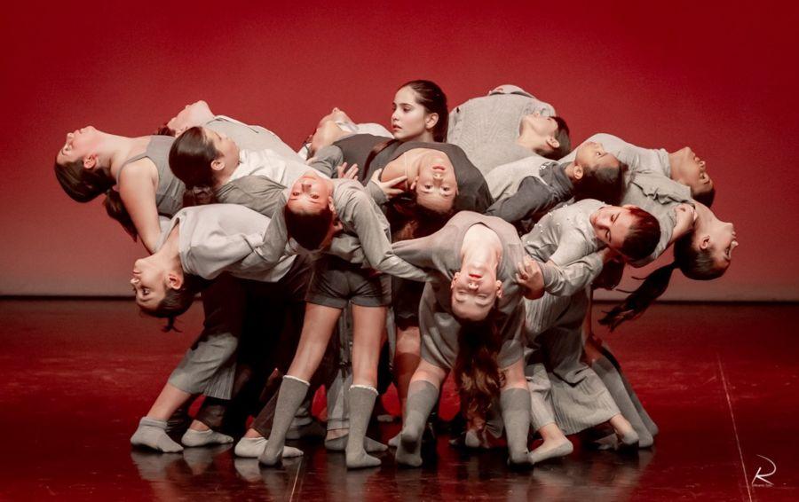Abertura da 2ª fase de Audições para o Ensino Articulado de Dança | Ai!aDança