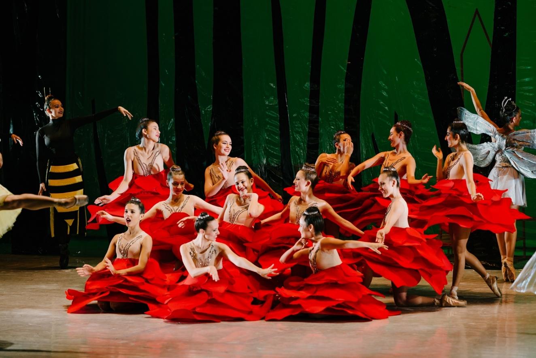 Alicia en el país de las maravillas. María Amalia Pendones. Ballet