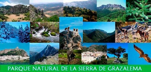 Parque Natural Sierra De Grazalema (Cadiz)