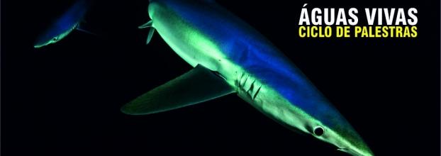 Palestra 'Os nossos tubarões'