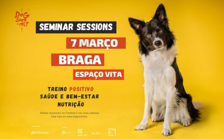 Braga Dog Summit Seminar Sessions