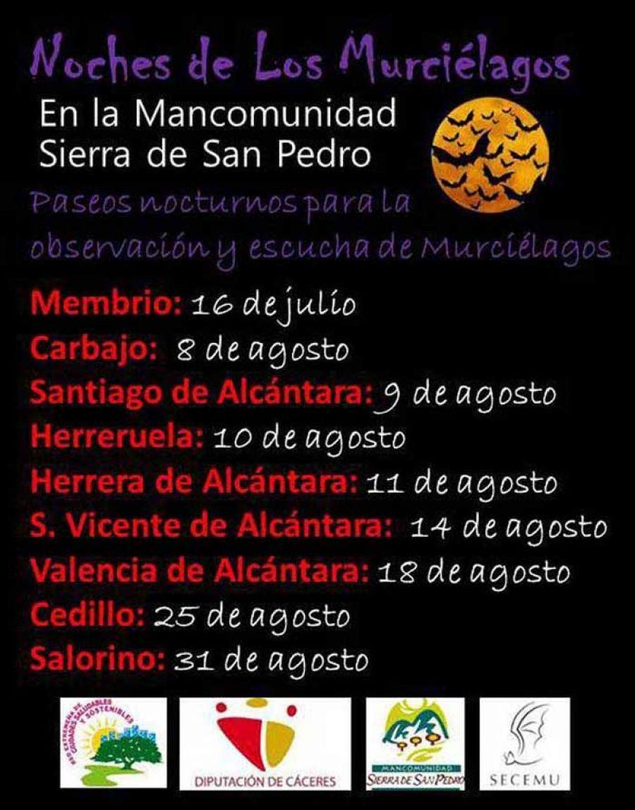 Salorino | NOCHE DE LOS MURCIÉLAGOS EN LA MANCOMUNIDAD SIERRA DE SAN PEDRO