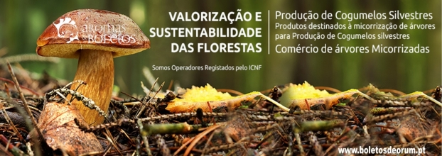 Curso avançado de produção de cogumelos silvestres (Micorrizas)