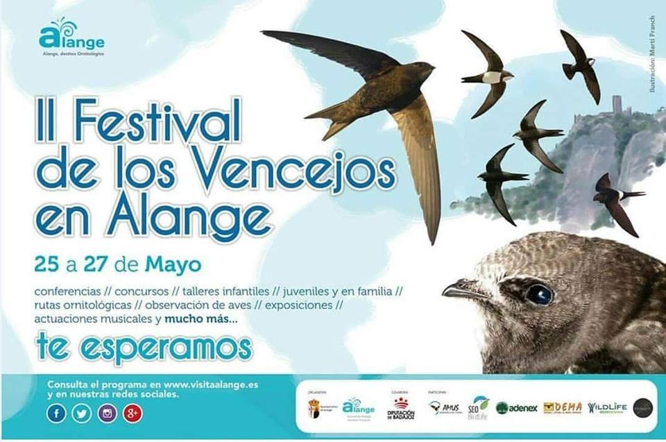 IpI Festival de los Vencejos de Alange (Badajoz)