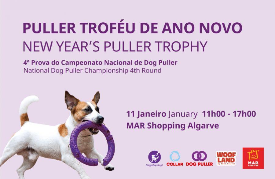 """MAR Shopping Algarve diz """"woof"""" ao novo ano com competição dedicada ao desporto canino"""