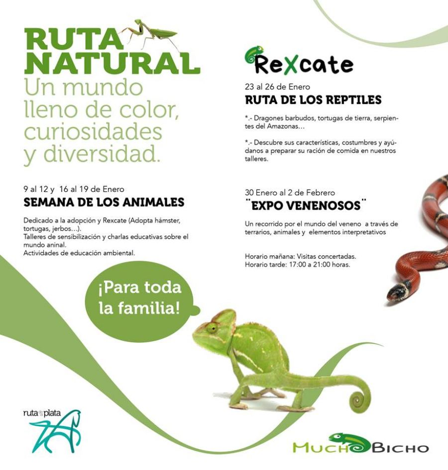 RUTA DE LOS REPTILES