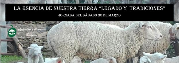 LEGADO Y TRADICIONES DE NUESTRA TIERRA CON LA FAMILIA OLEOSETIN; LA ESQUILA