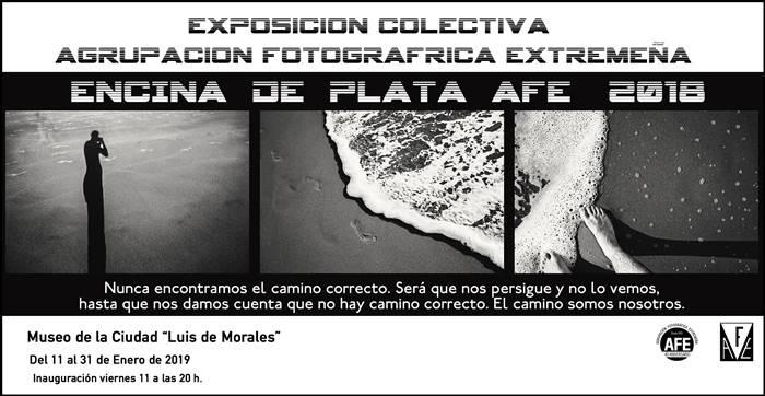 Exposición 'Encina de Plata AFE 2018' | Museo de la Ciudad 'Luis de Morales'