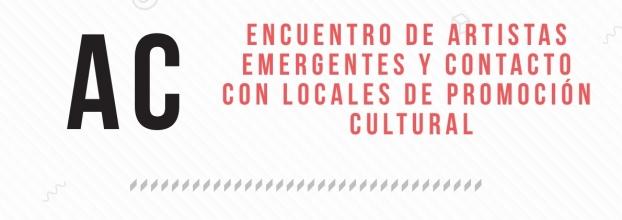 Encuentro de artistas emergentes y contacto con locales de promoción cultural