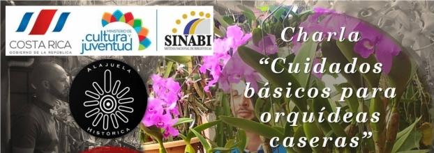 Charla: Cuidados básicos para orquídeas caseras