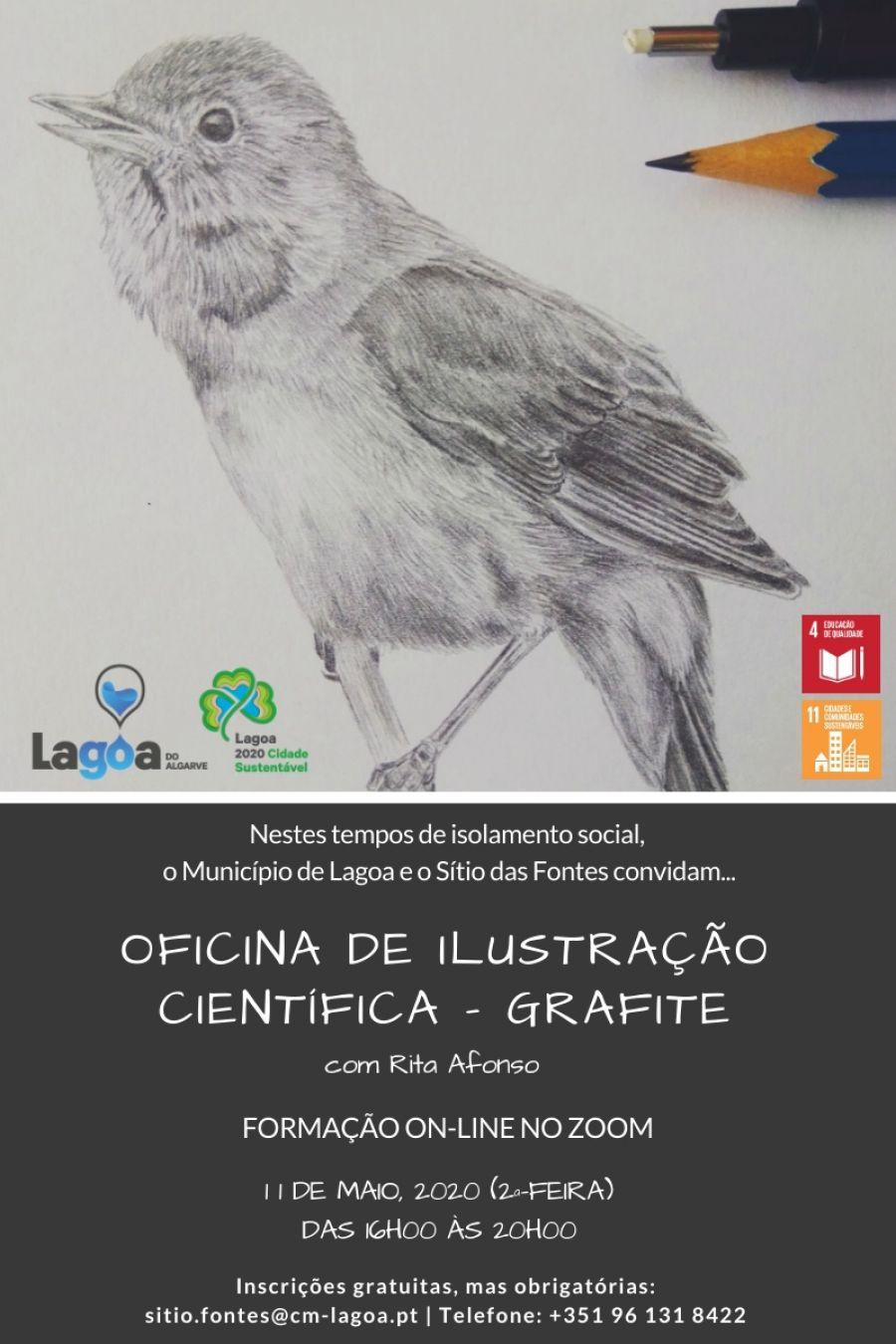 Oficina de Ilustração Científica 1 – Técnica de Grafite