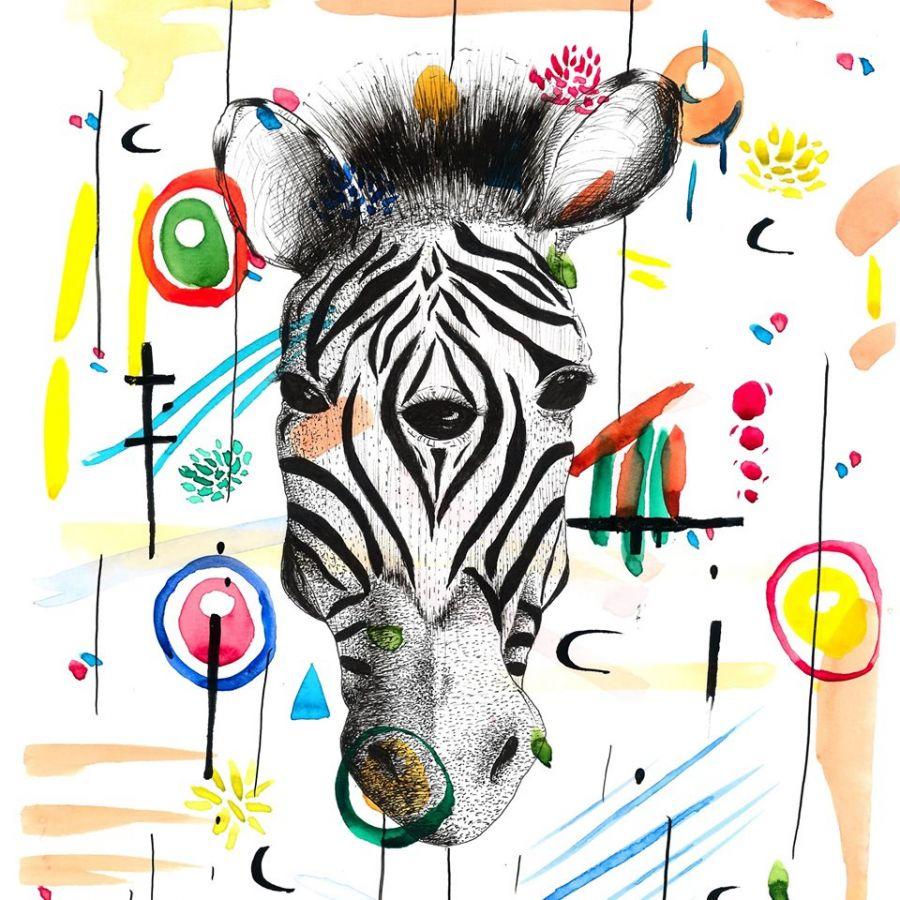 Festas Sanguinhedo Santo Tirso - Zebra Libra