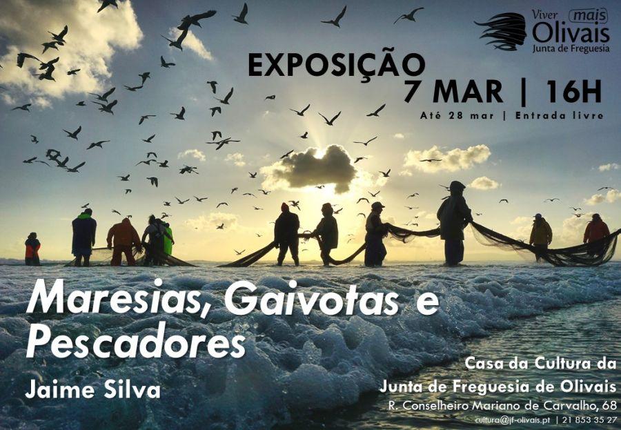 EXPOSIÇÃO Maresias, gaivotas e pescadores de Jaime Silva