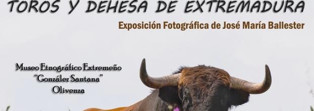 Exposición 'Toros y Dehesa de Extremadura', -Fotografías de José María Ballester