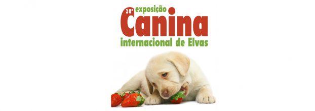 28ª Exposição Canina Internacional de Elvas
