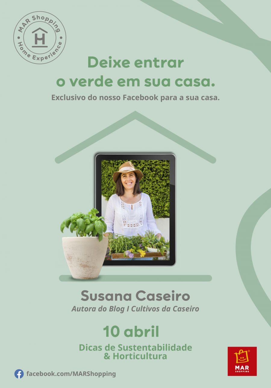 Cultivar novos aromas em casa é possível com as dicas da 'Cultivos da Caseiro'