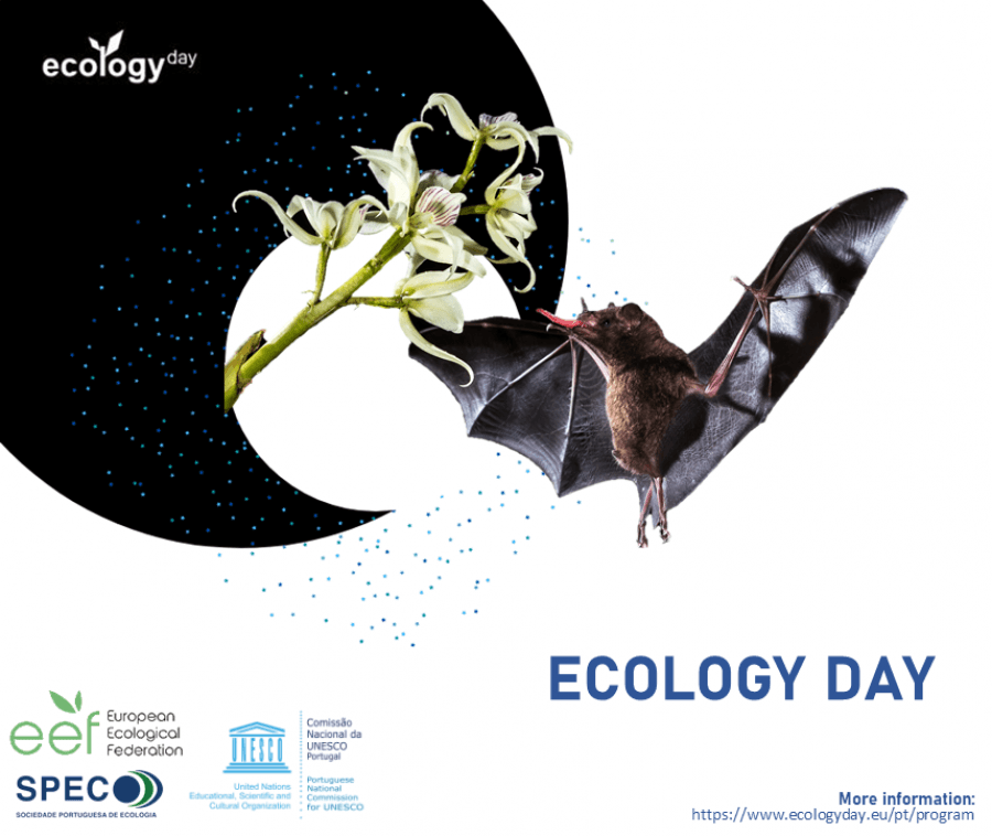 Ecology Day
