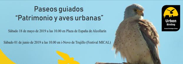 Patrimonio y Aves urbanas en Trujillo