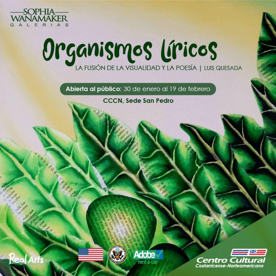 Organismos líricos. Luis Quesada. Pintura