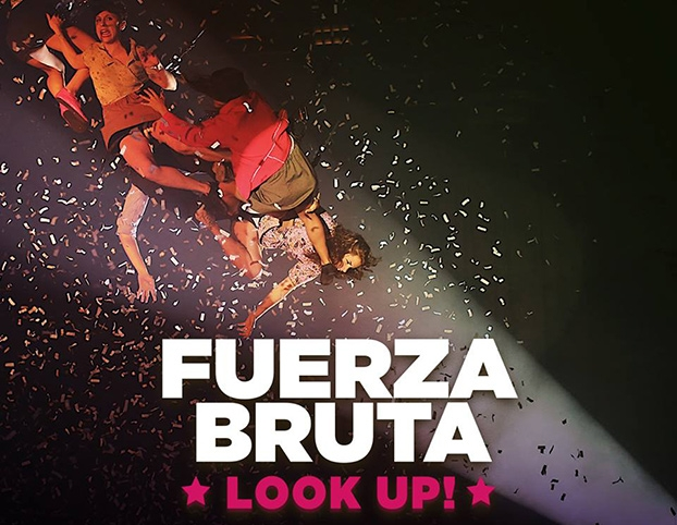 Fuerza Bruta, Look up.