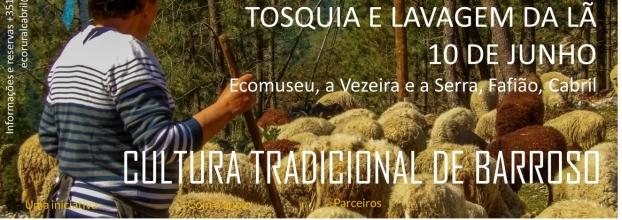 Pisões e Tradições, O Ciclo da Lã