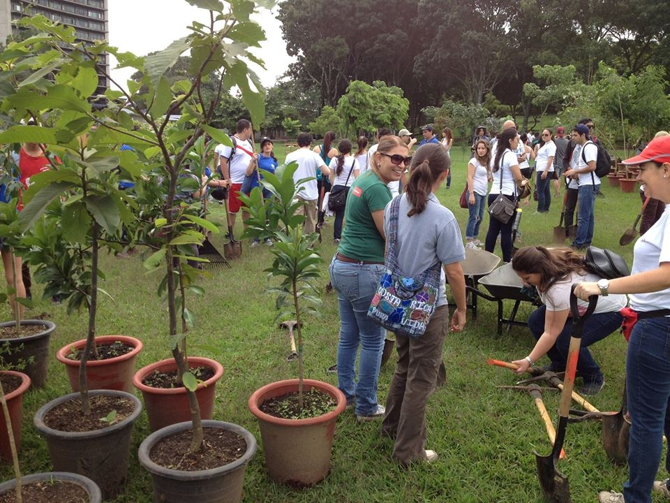 Jornada de reforestación