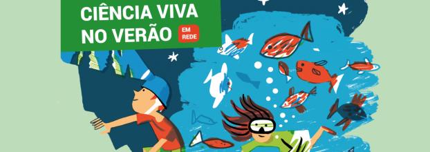 Islandap: Economia circular e aquaponia