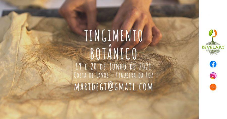 Workshop Tingimento Botânico (presencial)