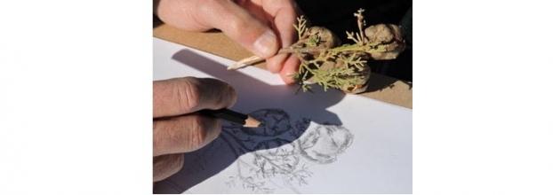 Workshop de Desenho nas Vinhas do Hotel