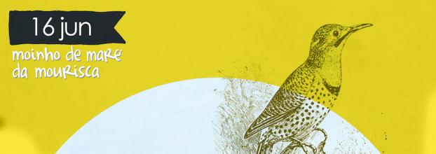 Anilhagem de Aves - 16 de junho no Moinho de Maré da Mourisca