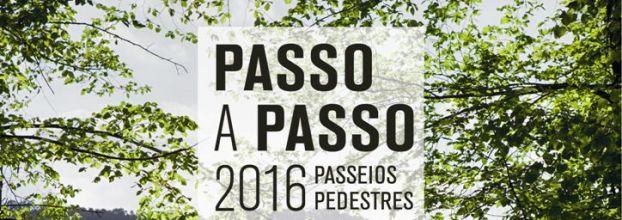 PASSO A PASSO 2016 - ALBURITEL