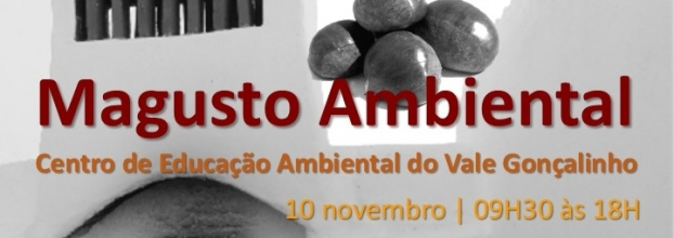 Magusto Ambiental