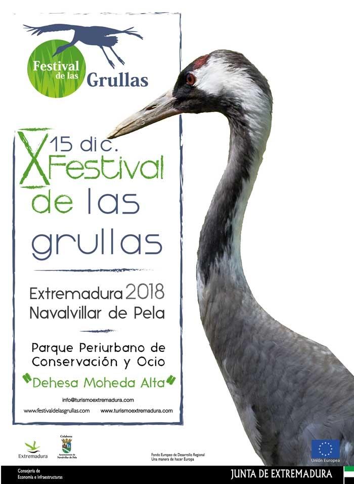 FESTIVAL DE LAS GRULLAS 2018 | Navalvillar de Pela
