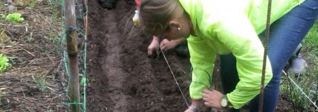 Iniciação à Horticultura Biológica (em terreno)