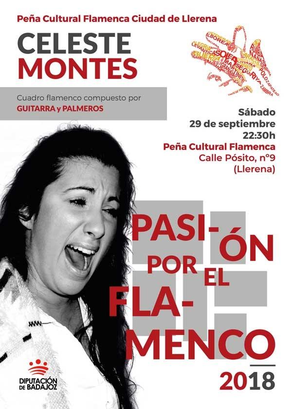 Pasión por el Flamenco   Celeste Montes