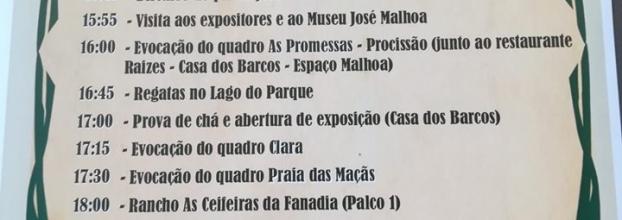 Festa do Agrupamento de Escolas Rafael Bordalo Pinheiro