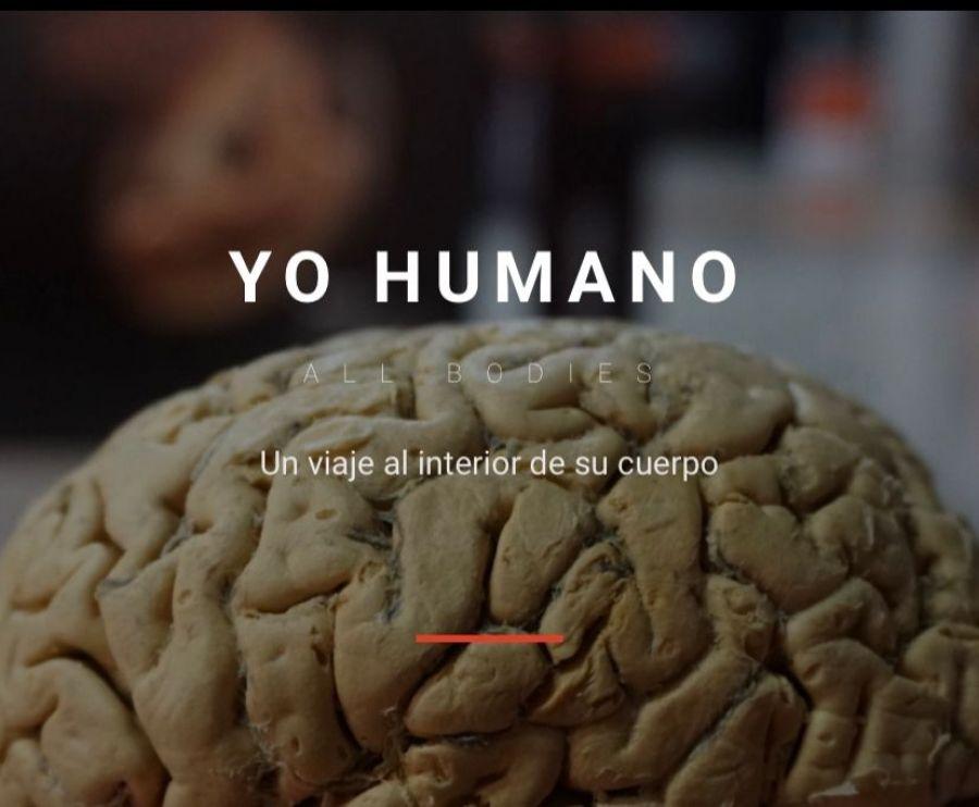 Yo Humano All Bodies. Un viaje al interior del cuerpo humano