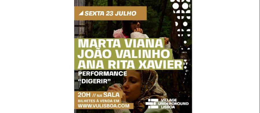 DIGERIR (performance)
