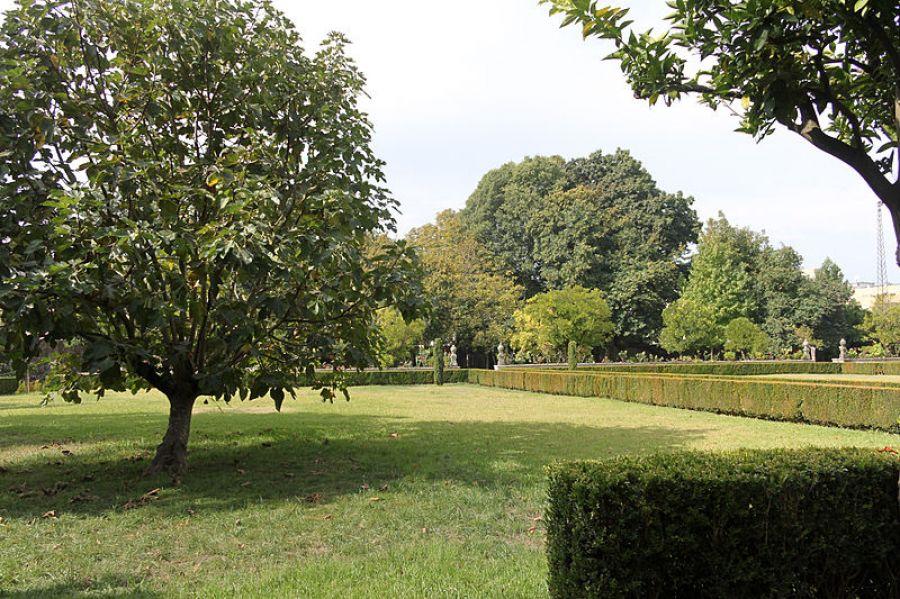 Tocar no Jardim