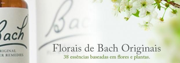 Consultas de Psicoterapia de Florais do Dr. Bach (Porto)