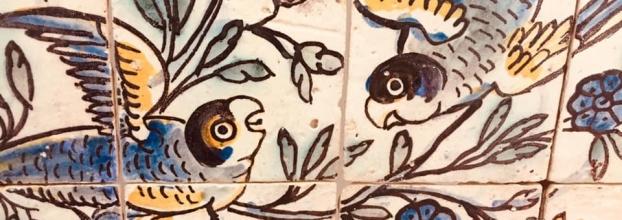As Aves a a Vida na Terra