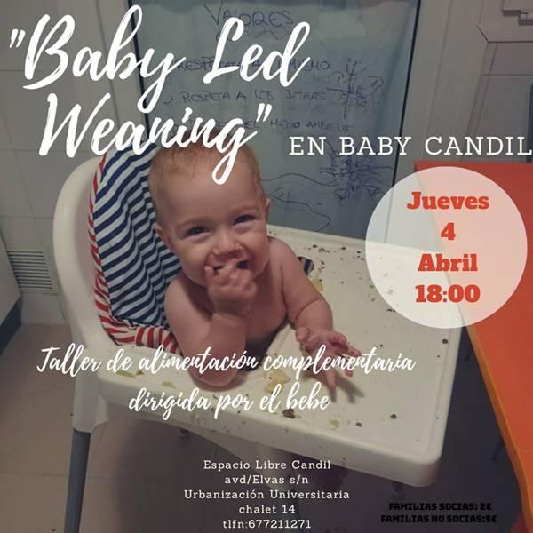 Taller de alimentación complementaria | Baby Candil